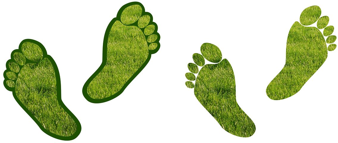 carbon-footprints
